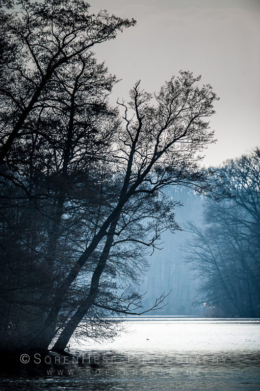 SMH-Wannsee16-20160309-2016338-0520